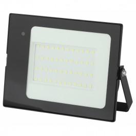 Прожектор светодиодный с датчиком движения Эра LPR-041-1-65K-050