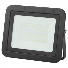Прожектор светодиодный Эра LPR-061-0-65K-050