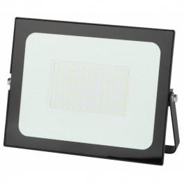 Прожектор светодиодный Эра LPR-021-0-65K-100