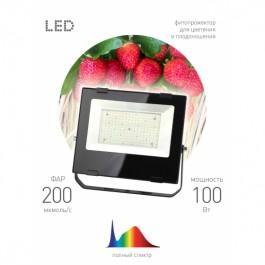 FITO-100W-Ra90-LED ЭРА ФИТО прожектор для цветения и плодоношения