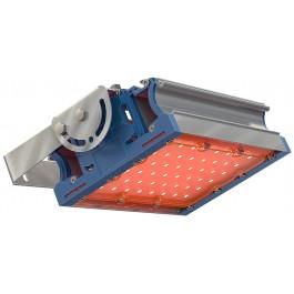 Светодиодный светильник TL-PROM 50 PR Plus FL Amber
