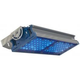 Светодиодный светильник  TL-PROM 100 PR Plus FL (Д) Blue