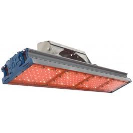 Светодиодный светильник  TL-PROM 200 PR Plus FL (Д) Amber