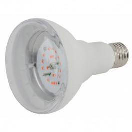 Лампа красно-синего спектра Эра FITO-16W-RB-E27-K
