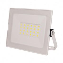 Прожектор светодиодный Эра LPR-031-0-65K-050