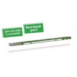 Светильники светодиодные «ФИТО» 18Вт, 1200мм.